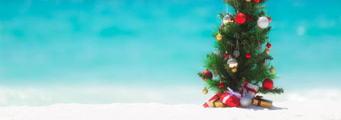 Decorated Christmas tree on a beach