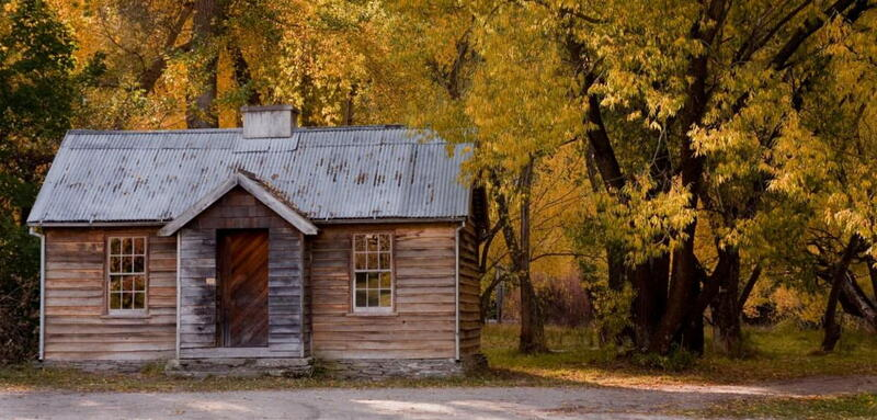 Rustic cabin amongst orange trees in the autumn